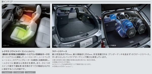 レクサスUXの後部座席と荷室容量検証!車中泊はできる?